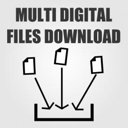 Back Office - multi digital files download